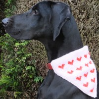 Thor modelling the heart motif kerchief