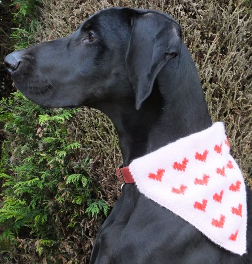 Thor modelling the heart motif kerchief